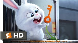 The Secret Life of Pets - Busting You Out! Scene (3/10) | Movieclips full download video download mp3 download music download