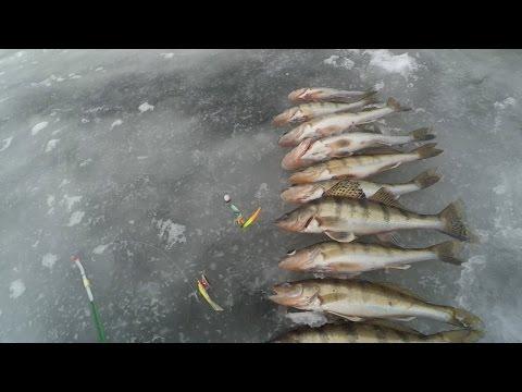 рыбалка на устье суры видео