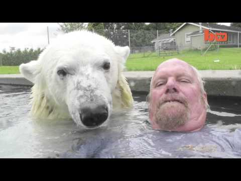 Jediný člověk na světě, který si může zaplavat s Polárním medvědem!