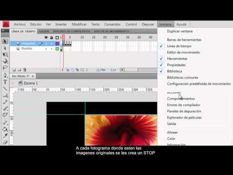 Tutorial creación galeria de imagenes en flash CS4