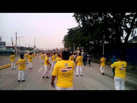 Sonorous DBC - Alay Lakad 2015