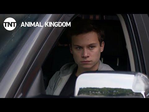 Animal Kingdom Season 2 (Promo 'Heist')