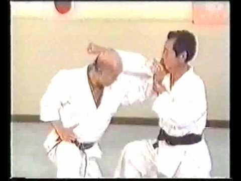 Wado Karate Idori by Tatsuo Suzuki Sensei