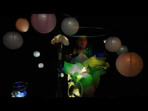 Buttonlites (Button lights) - Small Battery LED lights for lighting paper lanterns and flowers