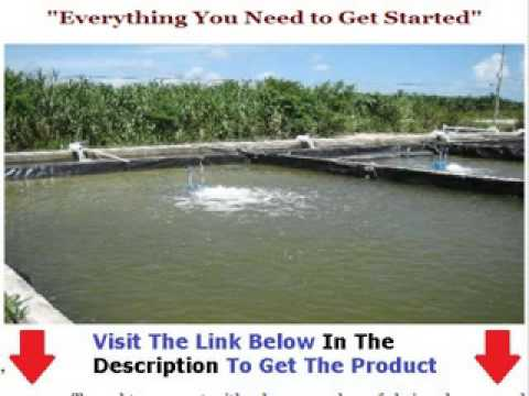 Shrimp Farming Info  THE SHOCKING TRUTH Bonus + Discount