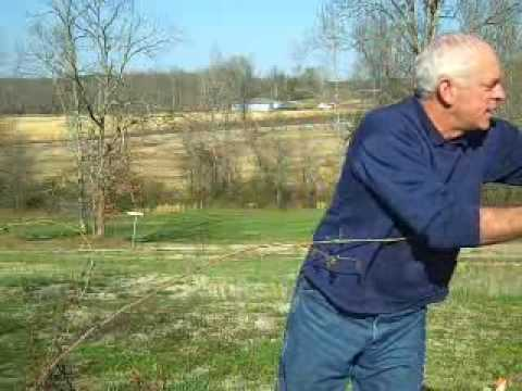 roses - Pruning climbing roses can sometimes be intimidating. It's not. Nor is controlling it all season long to keep it tidy. This video shows you some simple techn...