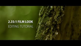 Nonton 2 35 1   Anamorphic Film Look  After Effects   Premiere Pro Tutorial  Film Subtitle Indonesia Streaming Movie Download