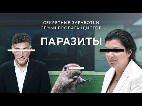 Симоньян и Кеосаян. Расследование  Навального