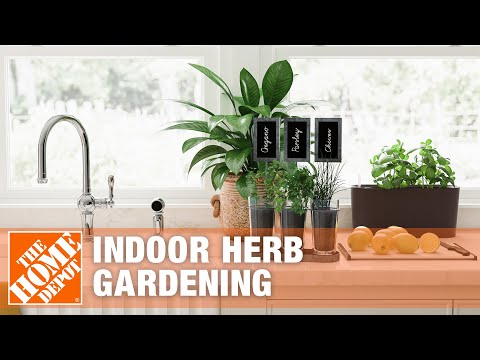 Indoor Herb Gardens: Tips and Tricks