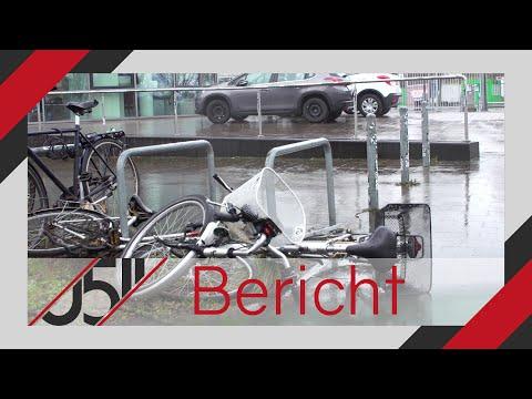 Die Auswirkungen des Sturmtiefs »Sabine« in Hannover
