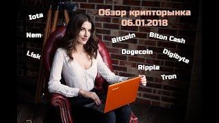 Обзор крипторынка 06.01.2018 Dogcoin, Bitcoin, Bitcoin Cash, Digibyte, Ripple, Nem, Lisk, Iota, Tron