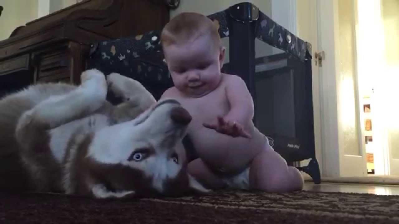 Ovako se maze i vole beba i kuca