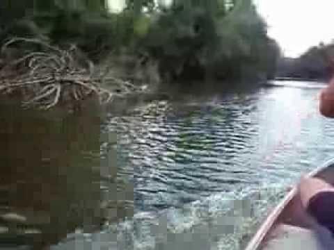 Navegando Rio Bituva (Rio Negrinho)