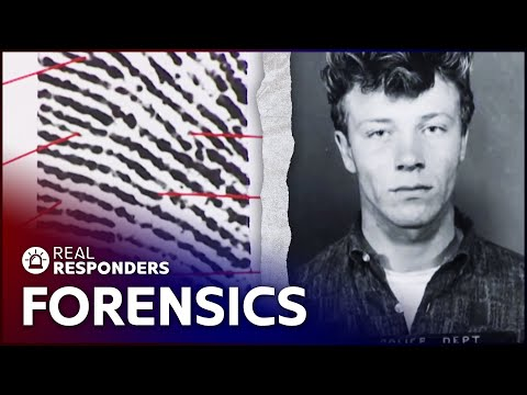 How Forensics Helped Solve A Cold Case | New Detectives | Real Responders