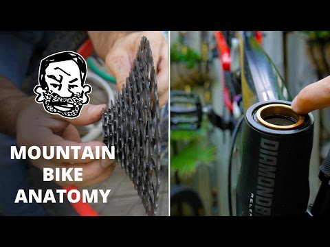 Mountain Bike Anatomy - 50 parts in 5 minutes (видео)