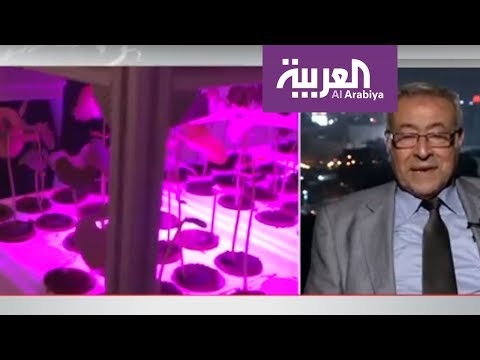 العرب اليوم - شاهد: النباتات تتأثر بمشاعر الإنسان