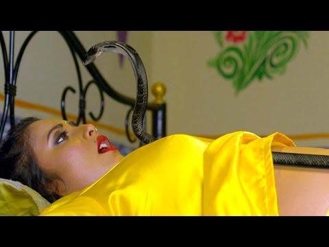 Video Rani Chattarjee - Priyanka Pandit || Yash Kumar Mishra - Ichchadhari Uncut Scene download in MP3, 3GP, MP4, WEBM, AVI, FLV January 2017