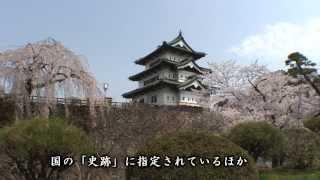 【HD】青森県 弘前公園の桜 (弘前城) – がんばれ東北!
