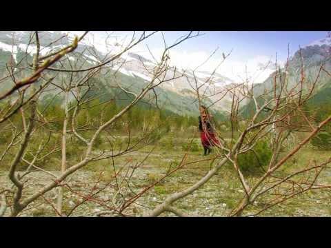 'Souhait gracieux' : Poème de Nicole Coppey Musique Daniel Nolé