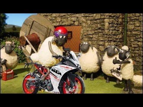 🐑  Shaun The Sheep 🐑 🎬  Make Film 🎬Shaun The Sheep Cartoons | Best New Collection 2020