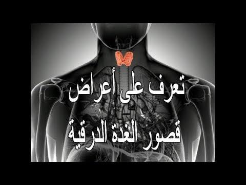 http://www.youtube.com/embed/RhtHWSrrpuA