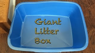 Pureness Giant Cat Litter Pan Review