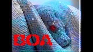 BOA - La Oracion del Sicario (audio)
