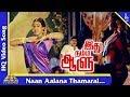 Naan Aalana Thamarai  Song   Idhu Namma Aalu Tamil Movie Songs  K. Bhagyaraj  Shobana  Pyramid Music