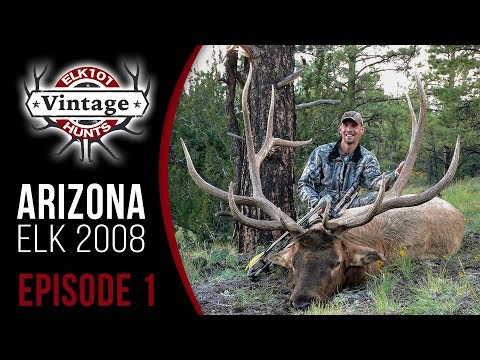 "Watch Corey Jacobsen Shoot His Biggest Archery Bull - 390""!"