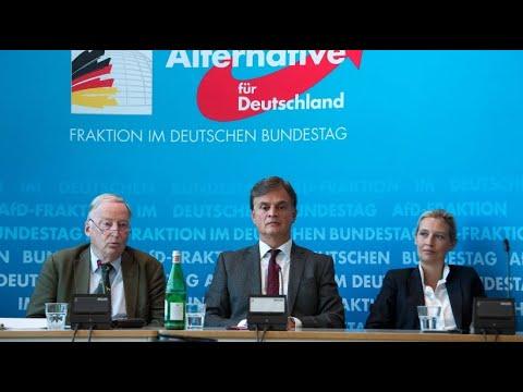 AfD will Beobachtung durch Verfassungsschutz verhinde ...