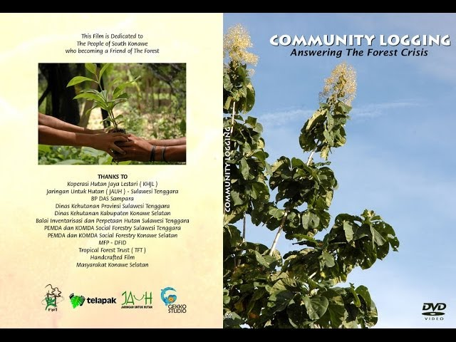 Community Logging Answering The Forest Crisis