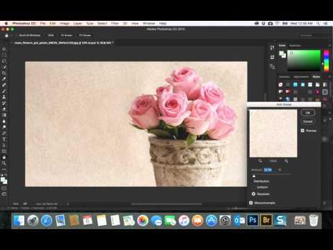 33- PhotoShop CC|  filter add noise