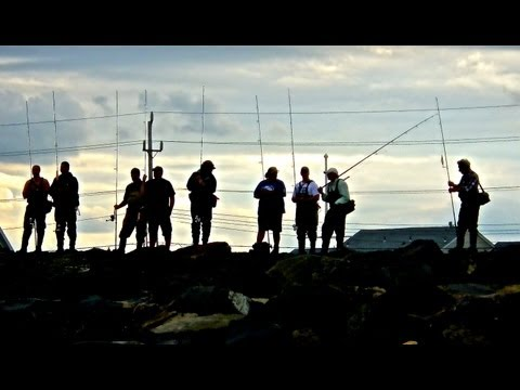 COMBAT FISHING NEW JERSEY JETTY'S – June 2013