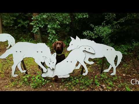 Charlie & Eddy im Natur und Umweltpark Güstrow