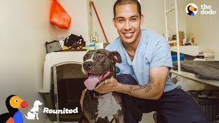 Dog Surprise Reunion with Prisoner Who Saved His Life | The Dodo REUNITED by The Dodo