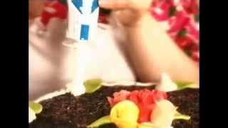 Indulona krém - stará reklama z roku 1997