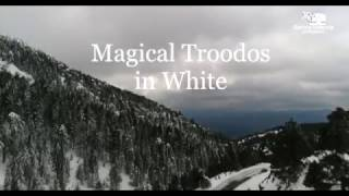 Magical Troodos dressed in white