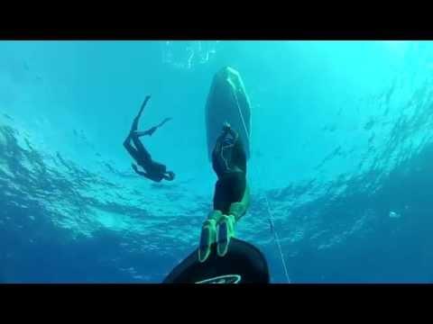 freediving tahiti