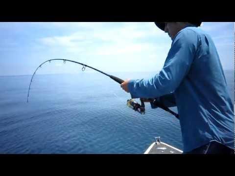 在海上原本釣到了一條大魚,竟然中途被大鯊魚給搶走!?