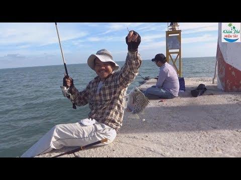 Câu cá biển ở trụ điện hòn sơn P1 | Fishing - Thời lượng: 24:03.