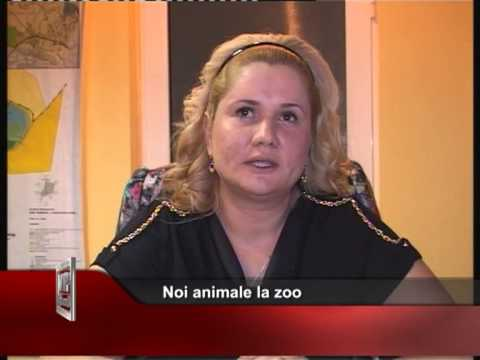 Noi animale la zoo