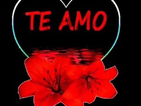 Frases de amor con IMAGENES BONITAS para dedicar  SAN VALENTIN 14 de febrero