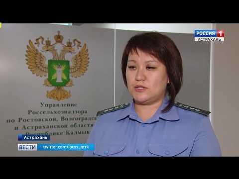 Управлением Россельхознадзора проводится федеральный лабораторный мониторинг качества и безопасности продукции животного происхождения в дошкольных учреждениях города Астрахани