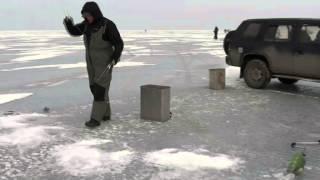 Зимняя рыбалка. Владивосток 12.02.2013.