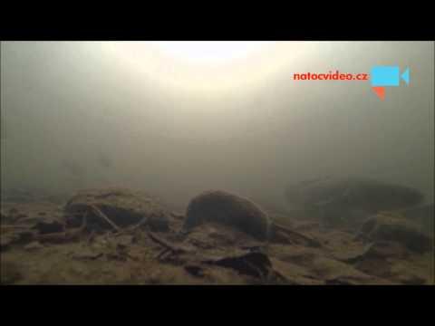 Mník na řece Chrudimce