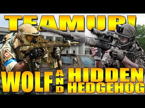 WOLF AND THE HIDDEN HEDGEHOG TEAM UP!!!!!