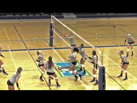 Volleyball Travels to the Maverick Classic