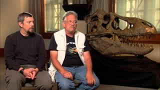 Dinosaur 13 Interview