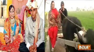 Haryana India  city photo : Love Knows No Boundary: American Woman Marries Haryana Boy After Love Via Facebook - India TV