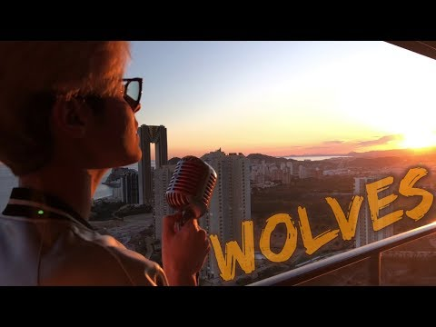 Selena Gomez, Marshmello - Wolves (Kristian Kostov Cover) (видео)
